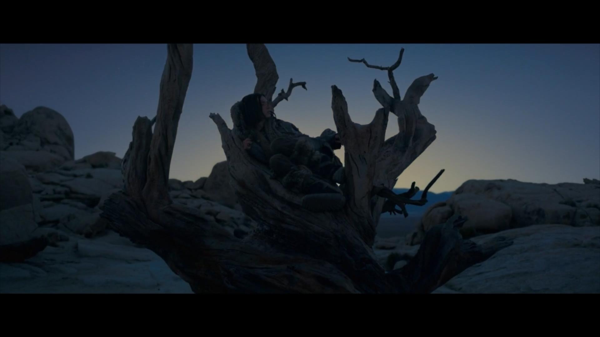 2018《阿尔法:狼伴归途》2700字,7分钟剧情解说稿-第4张图片