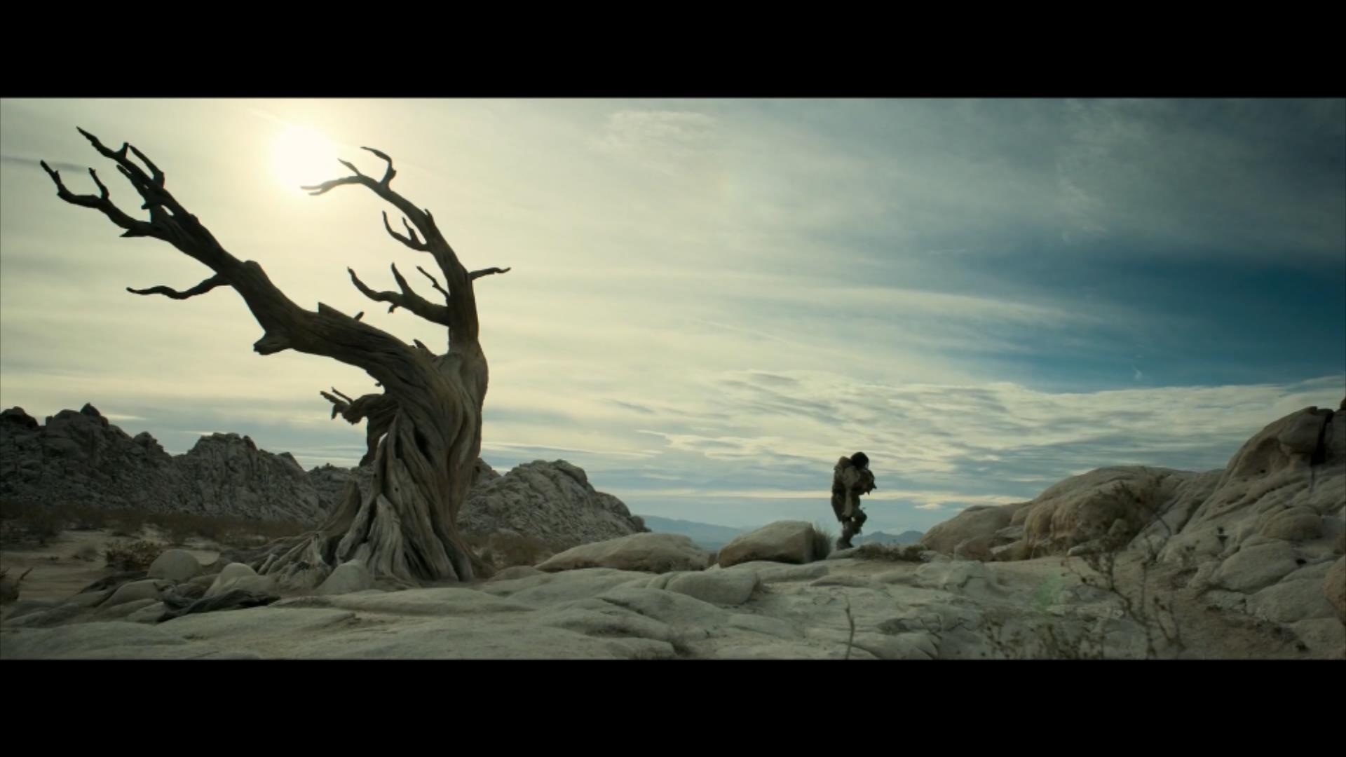 2018《阿尔法:狼伴归途》2700字,7分钟剧情解说稿-第5张图片