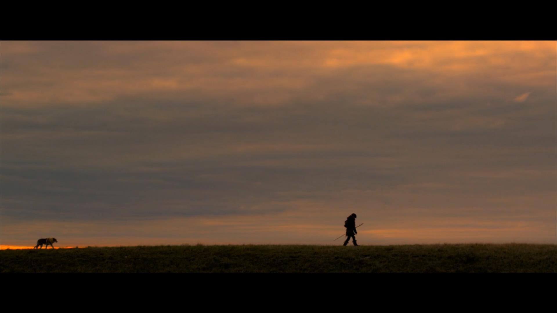 2018《阿尔法:狼伴归途》2700字,7分钟剧情解说稿-第8张图片