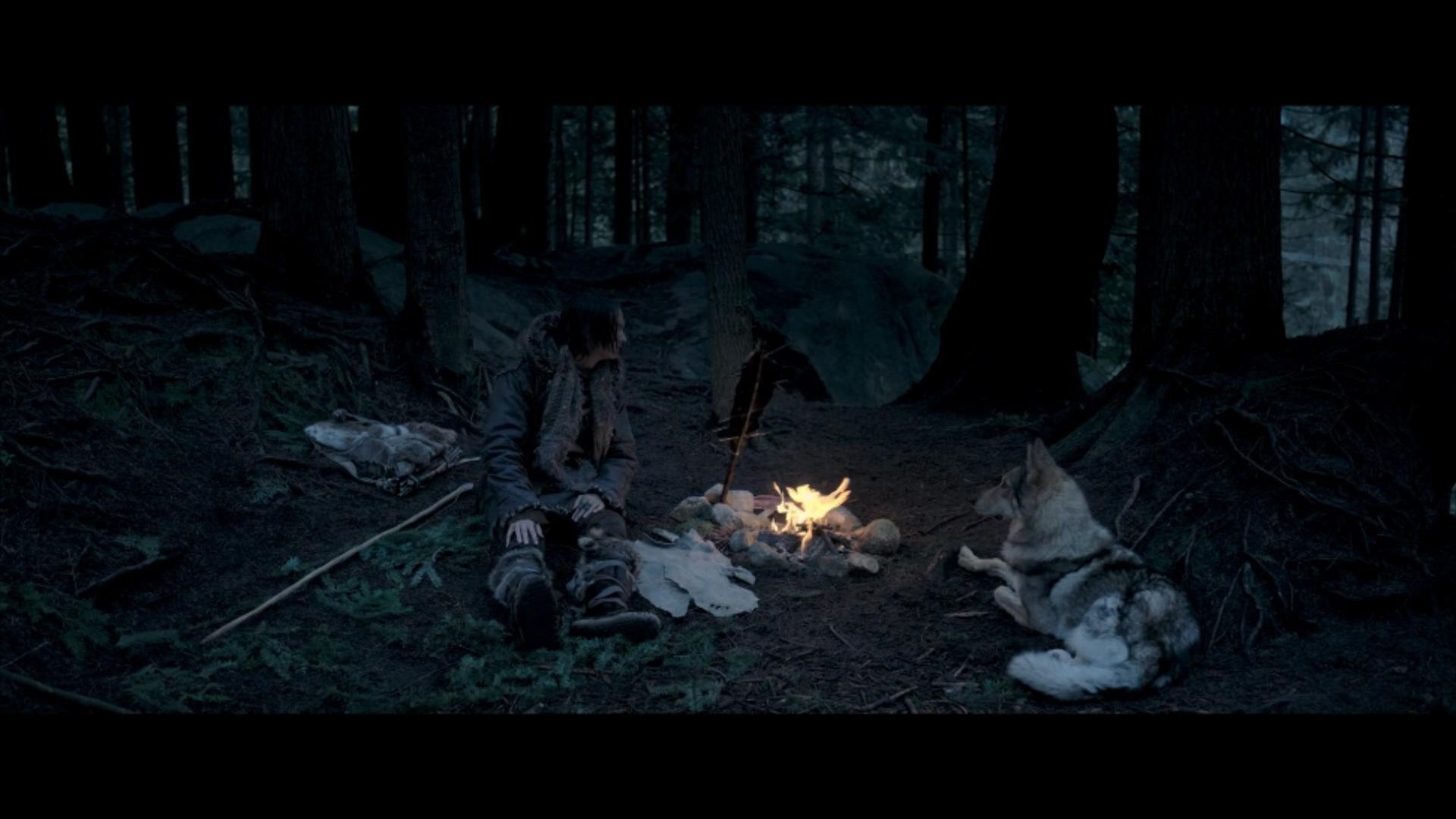 2018《阿尔法:狼伴归途》2700字,7分钟剧情解说稿-第9张图片