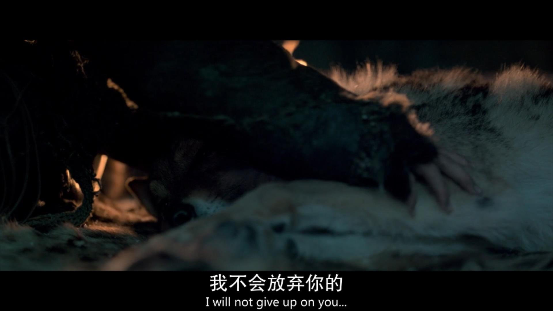 2018《阿尔法:狼伴归途》2700字,7分钟剧情解说稿-第13张图片